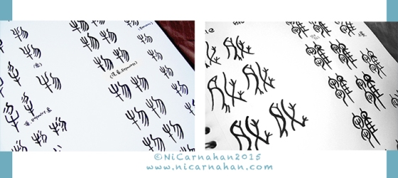 ©Ni Carnahan 2015. All Rights Reserved. 版權所有© 妮·康納漢- 保留所有版權權利!!  Ni's handwritten Chinese calligraphy 2015.